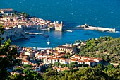 France, Pyrenees Orientales, Cote Vermeille, Collioure, the Royal Castle and Notre-Dame-des-Anges church