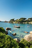 France, Cotes d'Armor, Perros Guirec, an old rig in the bay of St-Guirec at Ploumanac'h on the Pink Granite Coast