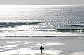France, Finistere, Iroise Sea, Cap Sizun, Plogoff, Pointe du Raz, Baie des Trepasses