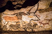 France, Dordogne, Perigord Noir, Vezere Valley, prehistoric site and decorated cave listed as World Heritage by UNESCO, Montignac sur Vezere, Lascaux II, decorated Paleolithic caves, auroch, horses and deer