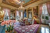 France, Paris, hôtel de Salm, the room of the Muses