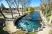 France, Cote-d'Or, Beze, Promenade de la Source around the resurgence of the Beze river