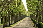 France, Oise, Compiegne, the castle which was the former royal and imperial residence, corridor on the side of the gardens