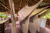 France, French Guiana, Kourou, resting hut with hammock under mosquito nets, Wapa Lodge