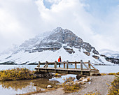 Hiker crossing bridge over creek in fall, Bow Lake, Canadian Rockies, Alberta, Canada