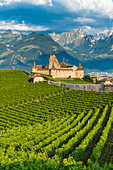 Aigle Castle and vineyards with the Swiss Alps in background, canton of Vaud, Switzerland, Europe
