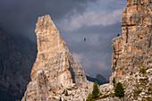 Adventure seeker high wire walking in Cinque Torri, Belluno, Dolomites, Italy, Europe