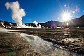 El Tatio geyser, Northern Chile, South America