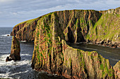 Westerwick, dramatic coastal views, red granite sea cliffs and stacks, West Mainland, Shetland Isles, Scotland, United Kingdom, Europe