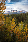 Mountain range at Morant's Curve in autumn foliage, Banff National Park, UNESCO World Heritage Site, Alberta, Rocky Mountains, Canada, North America