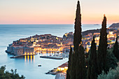 Aerial view of the old town at dusk, UNESCO World Heritage Site, Dubrovnik, Croatia, Europe