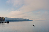 View from the bathing jetty in Percha on Lake Starnberg to the south towards the mountain, Starnberg, Bavaria, Germany.
