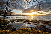 East bank of Lake Starnberg near Pischetsried in the evening light, Münsing, Bavaria, Deutchland