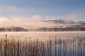 Frosty and foggy autumn morning at the Staffelsee; Uffing, Upper Bavaria, Bavaria, Germany
