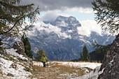 at the Falzargopass via Cortina d´Ampezzo, Dolomites Belluno, Veneto, Italy