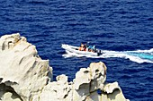 am Capo d´Enfola, Nordküste, Elba, Toskana, Italien