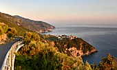 Coast at Corniglia, Cinque Terre, east coast of Liguria, Italy