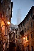 Town Hall Tower, Torre del Mangia, Siena, Tuscany, Italy