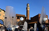 at Piazza Mercato with tower of the town hall, Siena, Tuscany, Italy