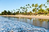 Myanmar (ex Birmanie). Ngapali. Etat d'Arakan. Golf du Bengale. Plage bordée de cocotiers // Myanmar (ex Birmanie). Ngapali. Arakan state. Bengal Golf Course. Beach lined with coconut trees