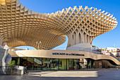 Mercado de la Encarnacion, Seville Metropol Parasol (Las Setas De Sevilla), Plaza de la Encarnacion, Seville, Spain, Andalusia, Spain, Europe