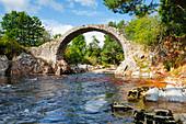 Carrbridge, oldest stone bridge in the Highlands, Scotland, United Kingdom, Europe