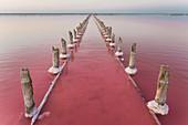 Ukraine, Crimea, Wooden posts in salt lake