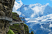 Several people stand on Cliff Walk with a view of Fiescherhorn, Tissot Cliff Walk, First, Grindelwald, Bernese Oberland, UNESCO World Natural Heritage Swiss Alps Jungfrau-Aletsch, Bernese Alps, Bern, Switzerland