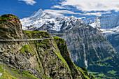 Cliff Walk with a view of Schreckhorn and Fiescherhorn, Tissot Cliff Walk am First, Grindelwald, Bernese Oberland, UNESCO World Natural Heritage Swiss Alps Jungfrau-Aletsch, Bernese Alps, Bern, Switzerland