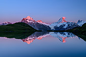 Wetterhorn, Schreckhorn and Finsteraarhorn in alpenglow are reflected in mountain lake, Bachalpsee, Grindelwald, Bernese Oberland, UNESCO World Natural Heritage Swiss Alps Jungfrau-Aletsch, Bernese Alps, Bern, Switzerland