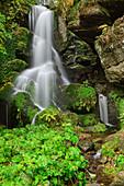 Lichtenhainer waterfall, Kirnitzschtal, Saxon Switzerland National Park, Saxon Switzerland, Elbe Sandstone, Saxony, Germany