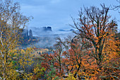 Foggy mood over monkey stones with autumnal colored forest, from the cowshed, Kirnitzschtal, Saxon Switzerland National Park, Saxon Switzerland, Elbe Sandstone, Saxony, Germany