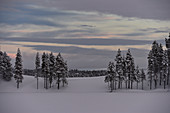 Schnee und Weite in der winterlichen Landschaft in Lappland, Hällvik, Schweden