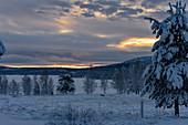 Verschneite Landschaft im Winter mit leuchtendem Himmel, Hällnäs, Lappland, Schweden