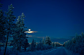 Full moon over the early morning winter landscape, Storuman, Lapland, Sweden