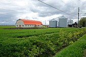 Farm, Quebec, Canada