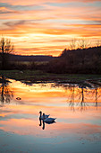 Evening glow at Schenkensee near Dornheim, Iphofen, Kitzingen, Lower Franconia, Franconia, Bavaria, Germany, Europe