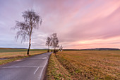 Evening mood near Langenfeld, Neustadt an der Aisch, Middle Franconia, Franconia, Bavaria, Germany, Europe