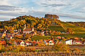 View of Castell in autumn, Kitzingen, Lower Franconia, Franconia, Bavaria, Germany, Europe