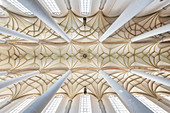 View to the cross vault of the nave of the parish church of St Martin, Lauingen, Dillingen district, Bavaria, Danube, Germany