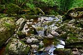 In der Steinklamm bei Spiegelau, Bayrischer Wald, Bayern, Deutschland