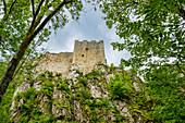Below the Weissenstein Castle, Lower Bavaria, Bavaria, Germany, Europe