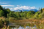 Summer day in the Murnauer Moos, Murnau, Bavaria, Germany, Europe