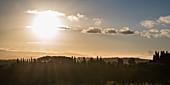 Tiefe Sonne über den Weinbergen, Provinz Siena, Toskana, Italien