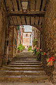Steep stairs in Lucignano, Arezzo Province, Tuscany, Italy