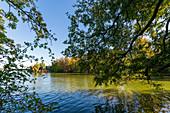 Blick auf den großen Eutiner See mit der Freilichtbühne im Hintergrund, Naturpark Holsteinische Schweiz, Ostholstein, Schleswig-Holstein, Deutschland