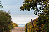 Path to the beach in Weissenhaus, Baltic Sea, Ostholstein, Schleswig-Holstein, Germany
