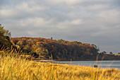 View of the Eitz Weissenhaus, Baltic Sea, Ostholstein, Schleswig-Holstein, Germany