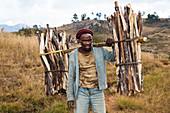 Madagascar carries firewood, Andringitra Mountains, Southern Madagascar, Africa