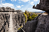 Suspension bridge in the karst landscape of Tsingy de Bemaraha, Tsingy-de-Bemaraha National Park, Mahajanga, Madagascar, Africa